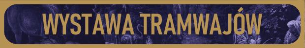 Wystawa tramwajów